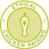 chicken, rooster, roaster, fryer, cock, coop, henyard, poultry, chuck, peeper, henhouse, raising chickens, eggs, chicken eggs, Highest Good food, ethical animal husbandry