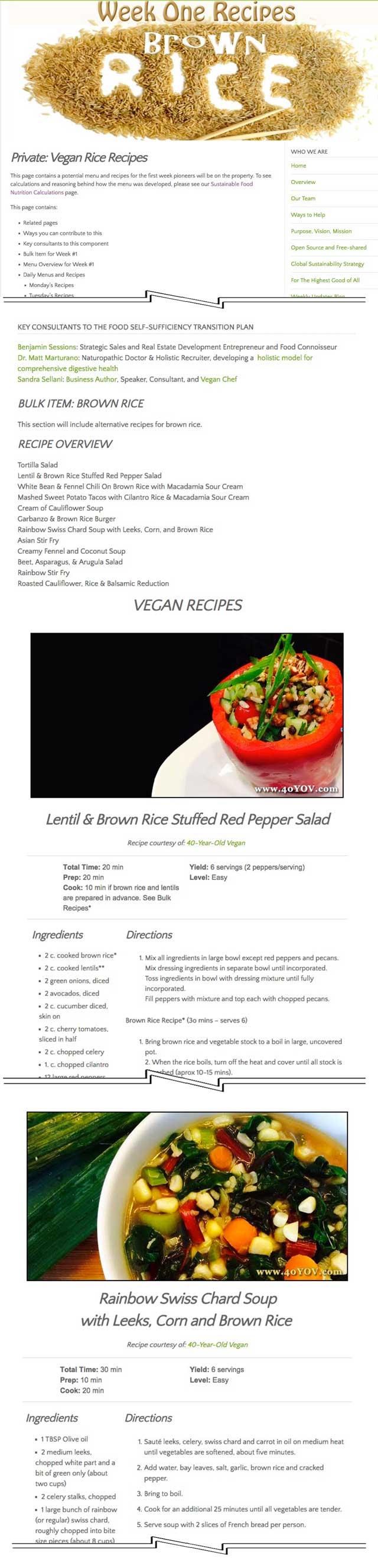 Transition To Vegan Crvlaving Fast Food